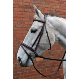 HyCLASS Deluxe Padded Headpiece Bridle