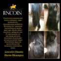 Lincoln Classic Horse Shampoo 500ml