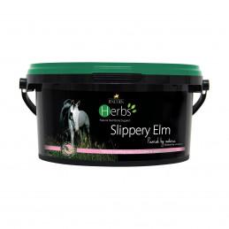 Slippery Elm -preparat na wrzody i kolki