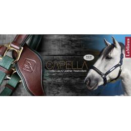 Kantar dla konia- LeMieux Capella