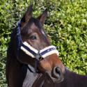 Kantar dla konia- LeMieux Loire 24h