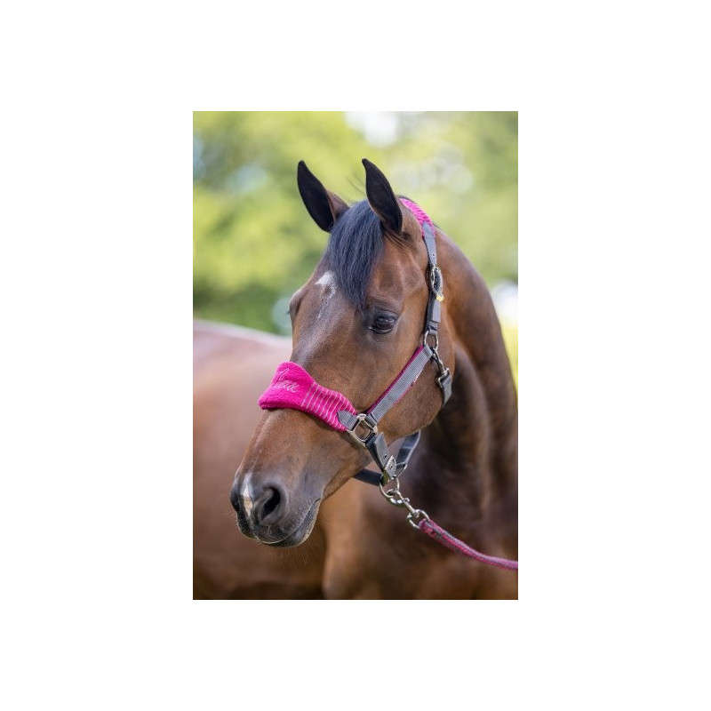 Kantar dla konia- LeMieux Loire