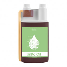 LinKo Oil Over Horse