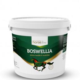 HorseLinePRO BoswelliaSerrata 2000g