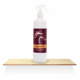 Clean White Shampoo Over Horse