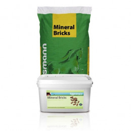 Mineral Bricks 25 kg Eggersmann