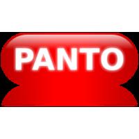 Panto