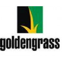 GoldenGrass