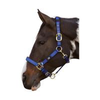 Kantary i uwiązy dla koni