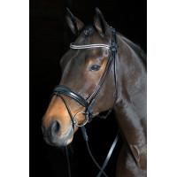 Naczółki dla koni