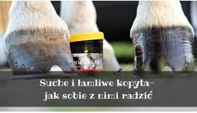 Suche i łamliwe kopyta u koni