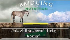 Jak zbilansować dietę konia?